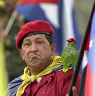 Чавес потрясен решением КПЛО