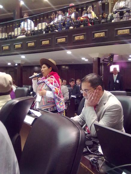 Выступает представитель Эквадора